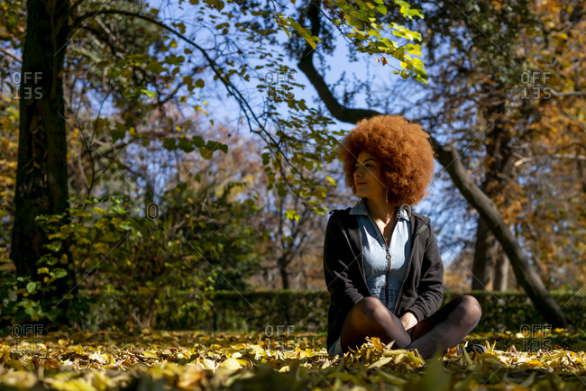 Smiling mid adult woman day dreaming while sitting in autumn park