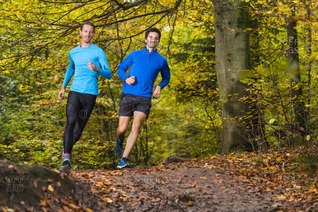 Male competitors trail running in autumn forest over mud at Kappelberg- Germany