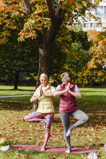 Mature female friends practicing yoga together at autumn park