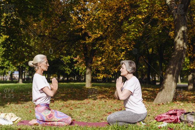 Mature female friends kneeling in autumn park- practicing yoga