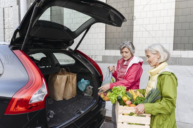 Female friends loading groceries in car trunk