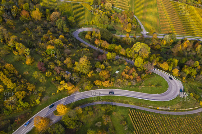 Aerial view of country road winding between autumn vineyards- Baden-Wurttemberg- Germany