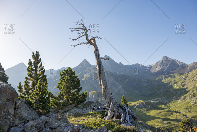 View of the Pyrenees from near Refugio Respomuso along the GR11
