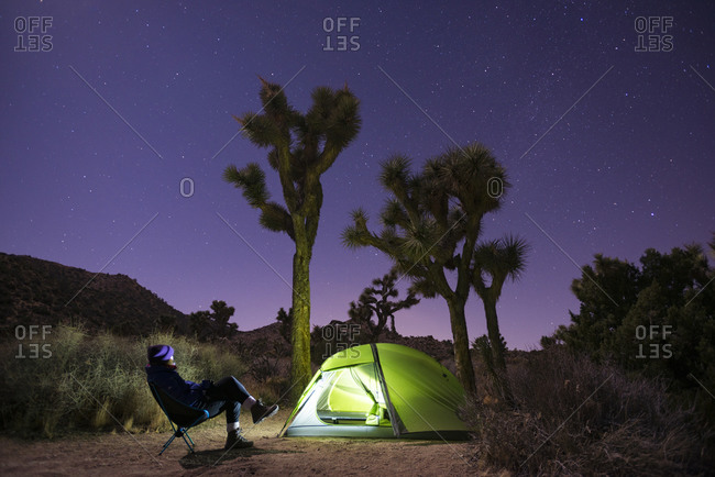 Glowing tent while camping and Joshua Trees silhouetted against a night sky  in Joshua Tree National Park