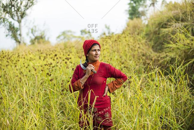 Portrait of a Nepali woman holding a sickle working in a millet field