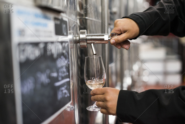 A woman working in a winery in England pours a sample of white wine from a tank