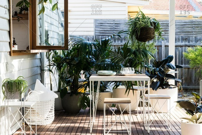 Back porch filled with potted plants and small table