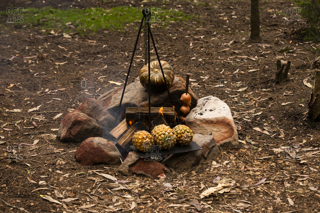 Pineapples, onions and squash cooking on a campfire