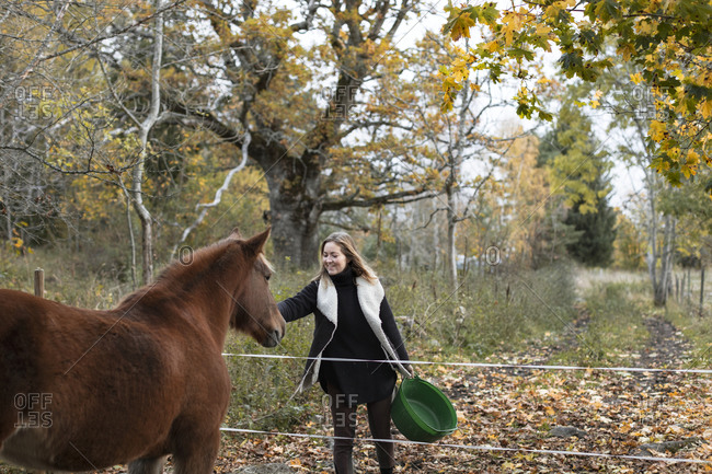 Woman feeding horse - Offset Collection