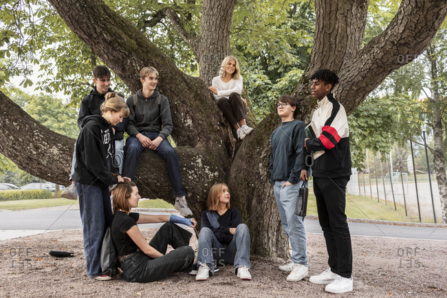 Group of teenage friends relaxing under tree