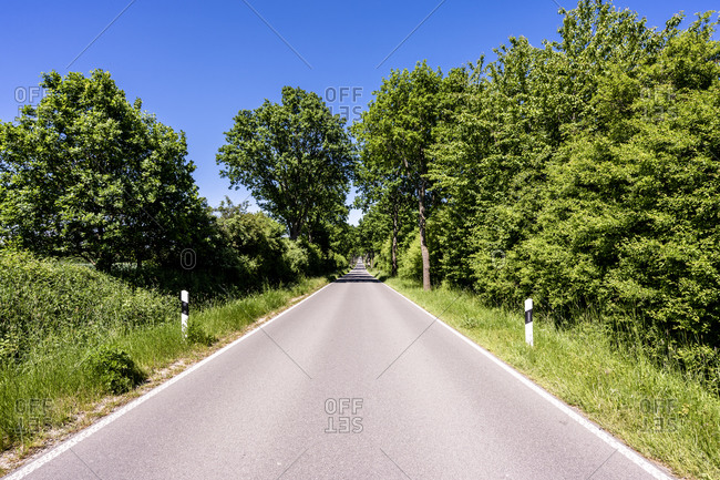 Germany- Mecklenburg-Western Pomerania- Empty asphalt road through Schaalsee Biosphere Reserve in summer