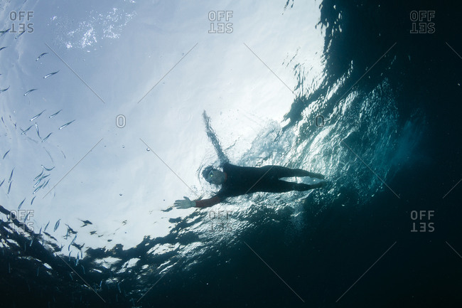 Man diving in sea among fish