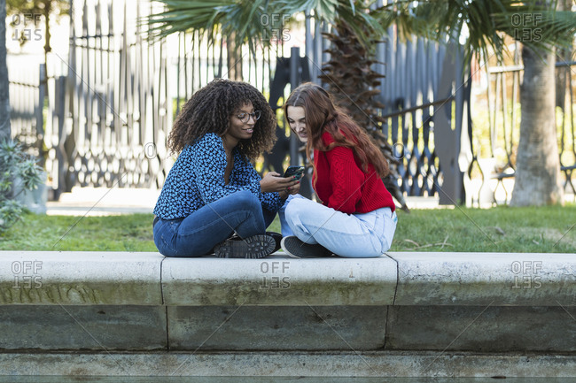 Smiling young women using mobile phone on retaining wall in public park