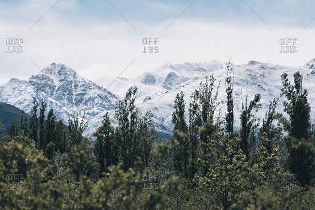 Scenic picture of Argentina, Mendoza in spring