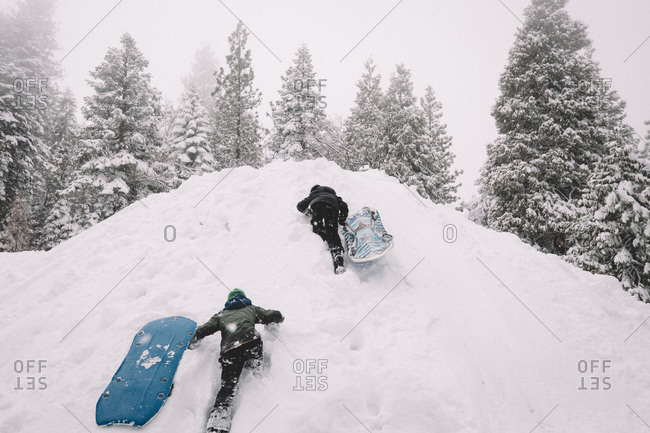Two Boys Climb Up a Snow Covered Hill with Sleds.