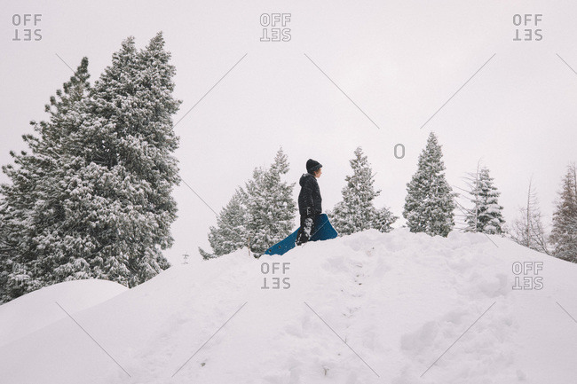 Boy Stands on top of a Snowy Hill with Sled