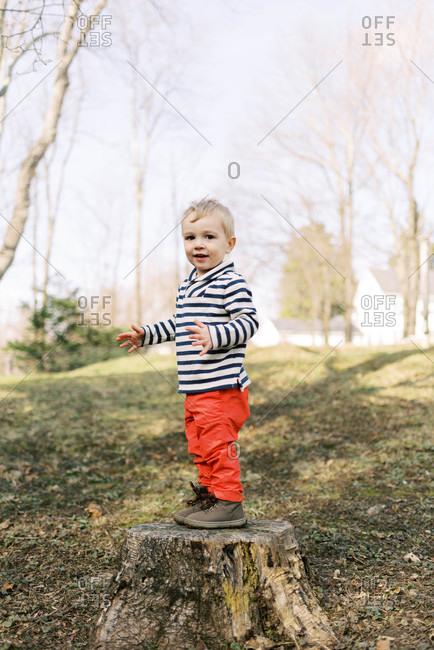 Little happy toddler boy standing on tree stump outside in backyard