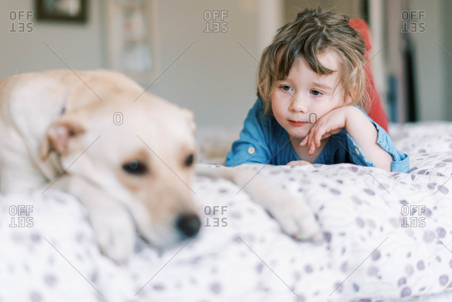 Sweet moment between caring gentle toddler girl and dog on bed