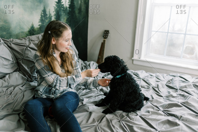 Woman with her black poodle dog on bed feeding him treats