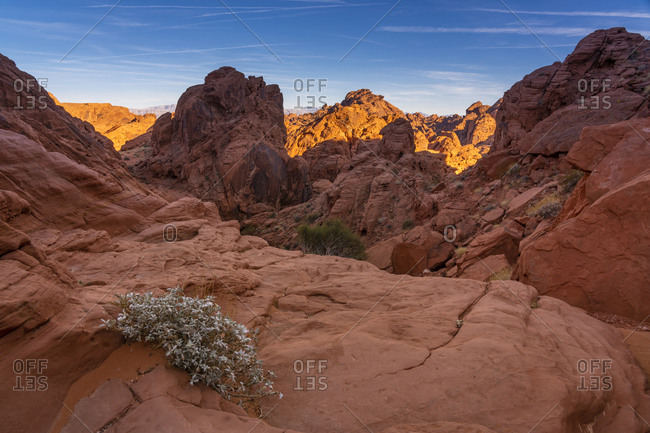 Red rock formations at sunset, Valley of Fire State Park, Nevada, USA