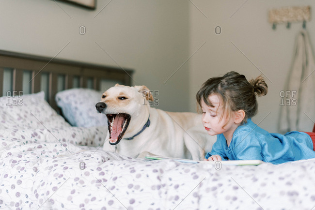 Little independent toddler girl on bed reading a story book with dog