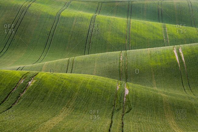 Idyllic view of rolling fields near Kyjov, Hodonin District, South Moravian Region, Moravia, Czech Republic