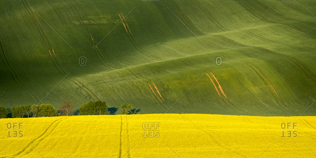 Scenic view of rolling fields near Kyjov, Hodonin District, South Moravian Region, Moravia, Czech Republic