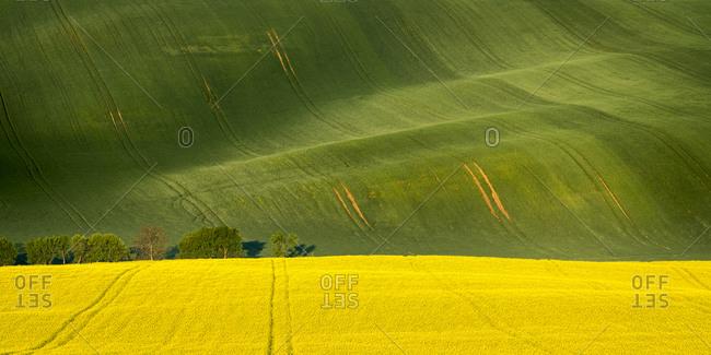 Scenic view of rolling fields near Kyjov, Hodonin District, South Moravian Region, Moravia, Czech Republic