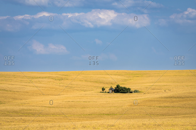 Scenic view of barn on field near Kyjov, Hodonin District, South Moravian Region, Moravia, Czech Republic