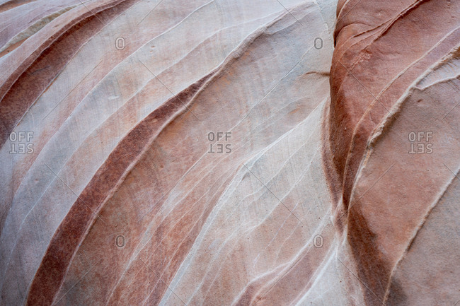 Detail of red rock in White Domes Slot Canyon, Valley of Fire State Park, Nevada, USA