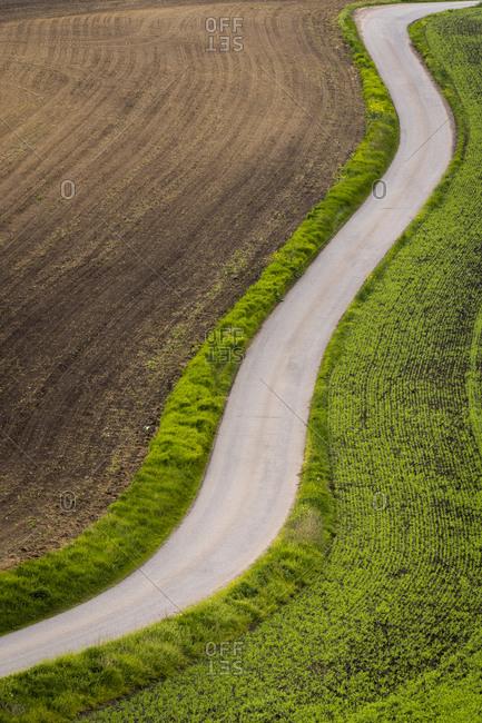 Idyllic view of winding road between fields near Kyjov, Hodonin District, South Moravian Region, Moravia, Czech Republic