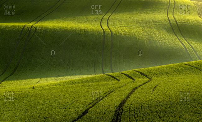 Idyllic view of rolling fields near Kyjov at sunrise, Hodonin District, South Moravian Region, Moravia, Czech Republic