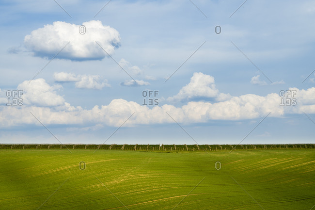 Scenic view of rolling field against sky near Kyjov, Hodonin District, South Moravian Region, Moravia, Czech Republic