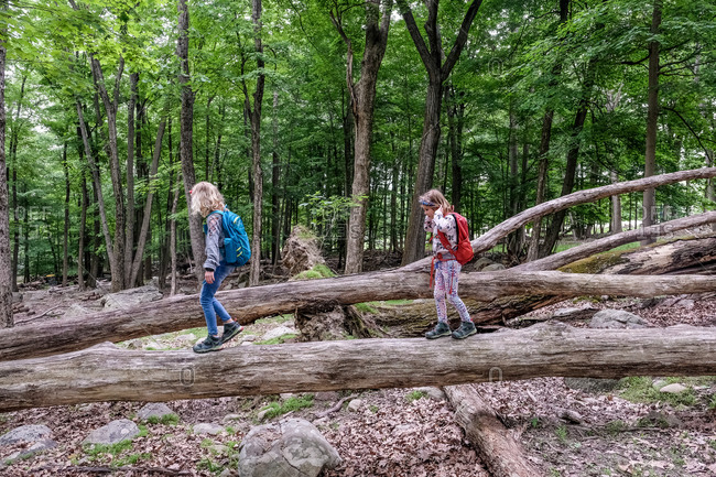 two girls walking across fallen tree trunks while hiking in springtime