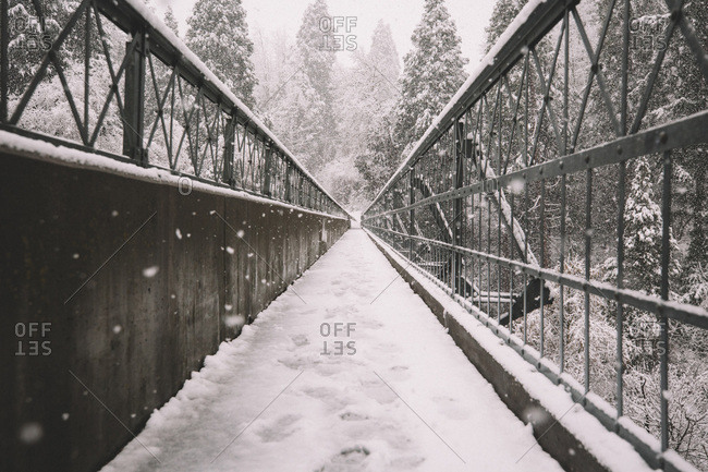 First Steps on Snow Covered Bridge