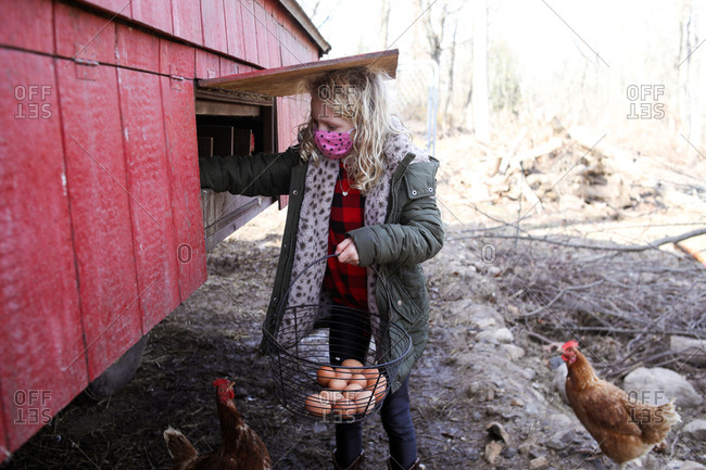 Girl wearing mask collecting eggs from henhouse outside in fall