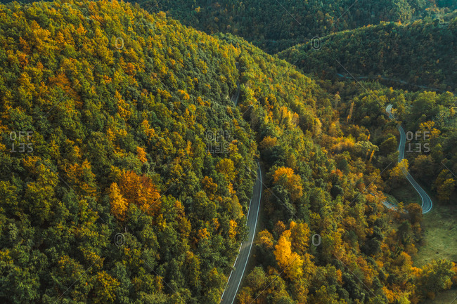 Aerial view of a forest road near Camprodon in Catalonia, Spain.