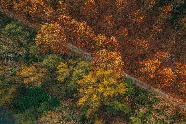 Aerial view of Autumn trees landscape with a smoky factory in background near Besalù little town, Girona, Spain.