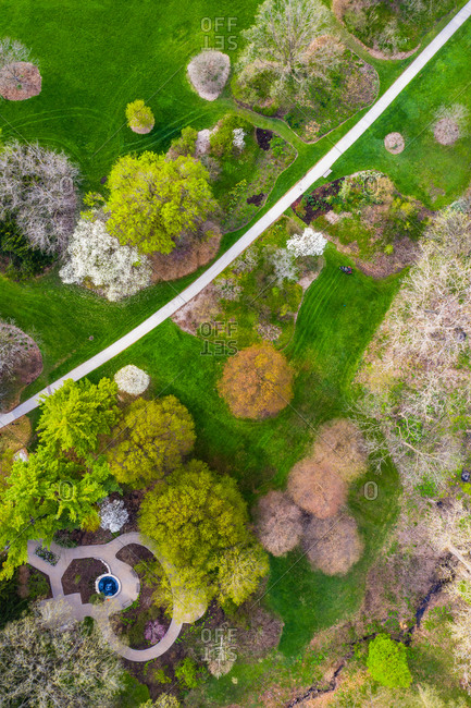 Aerial view of trees blossoming in springs at the Morton Arboretum in Chicago, Illinois, United States of America.