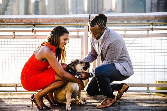 Couple dressed up in formal clothes play with their dog by the waterfront