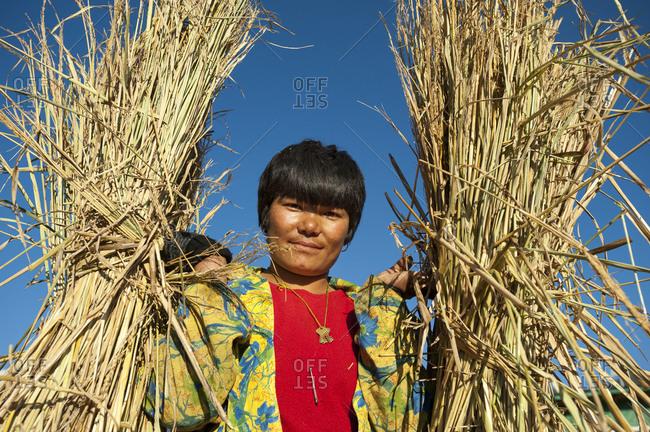 Paro, Bhutan - November 9, 2009: A woman holds harvested bundles of rice