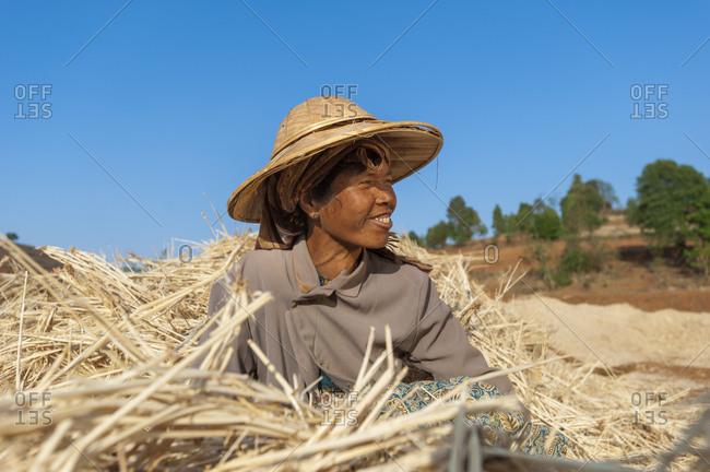 Pindaya, Shan State, Myanmar - April 2, 2010: A woman takes a short break from harvesting wheat