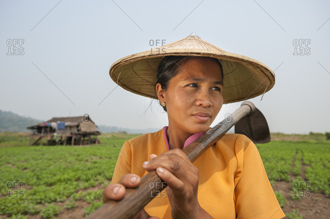 A peanut plantation next to Indawgyi lake in Kachin State