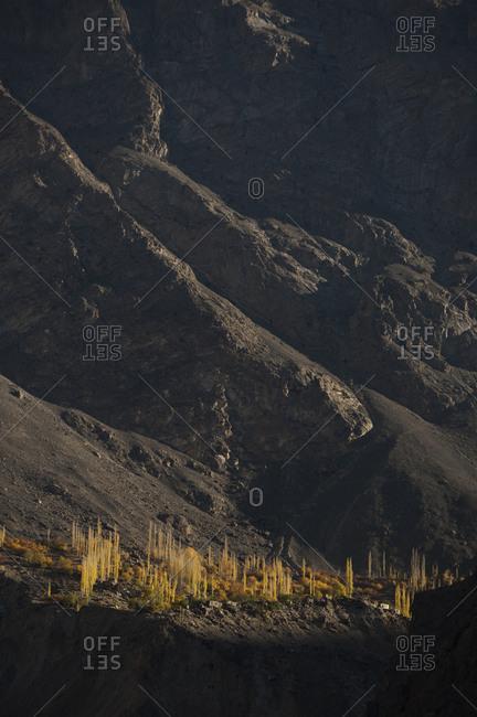 A small village near the Karakoram highway in the Skardu valley