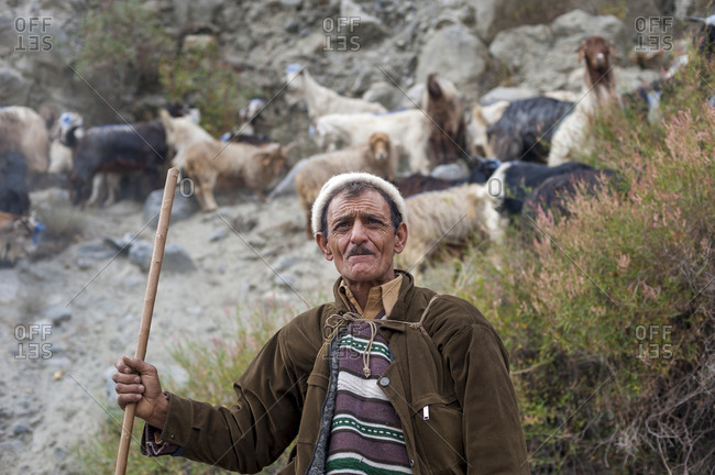 A shepherd next to the Gilgit-Chitral road in northern Pakistan