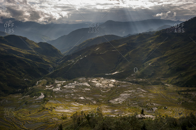 The Yuanyang rice terraces in Yunnan in China were fashioned over hundreds of years