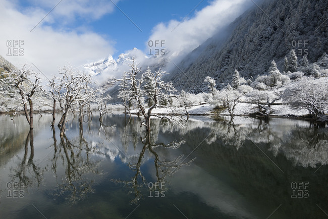 Early in morning frost in Mount Siguniang, an area of outstanding natural beauty in Sichuan Province in China