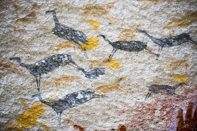 An ancient cave painting depiction of leaping Guanacos at Cueva de las Manos in Patagonia in Argentina