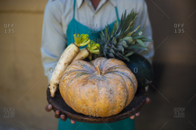 Freshly harvested organic fruit and vegetables at an organic farm in Nepal