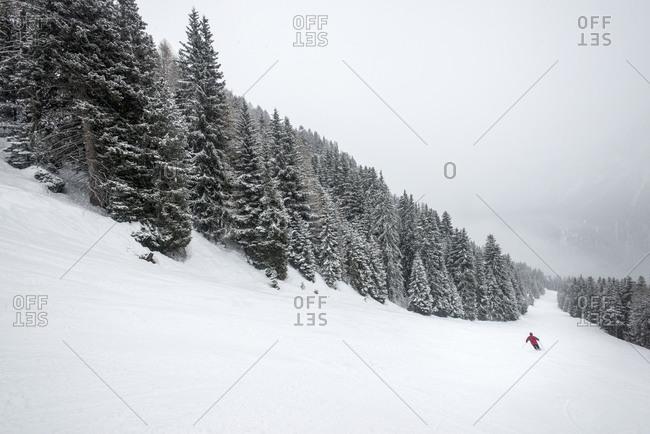 A skier at Vigo di Fassa in the Italian Dolomites makes their way down through a piste through a forest